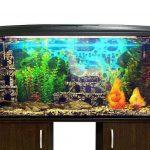 Best 75 Gallon Aquarium Stands